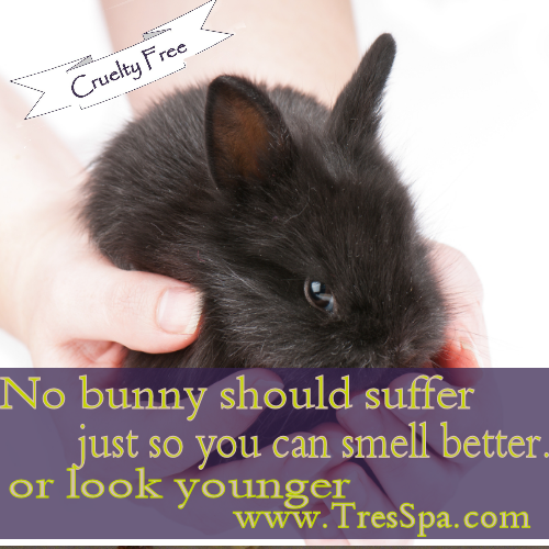 Cruelty Free Skin Care, Is It?